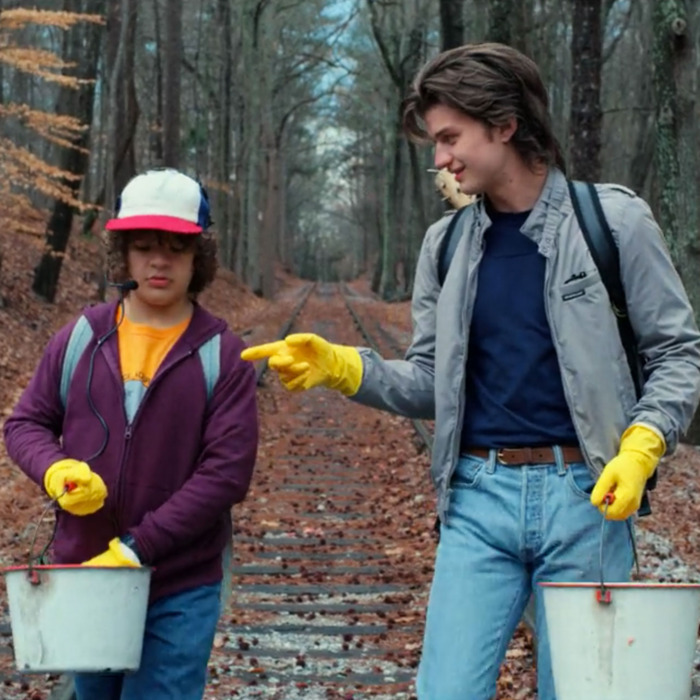 27-stranger-things-steve-dustin.w700.h700