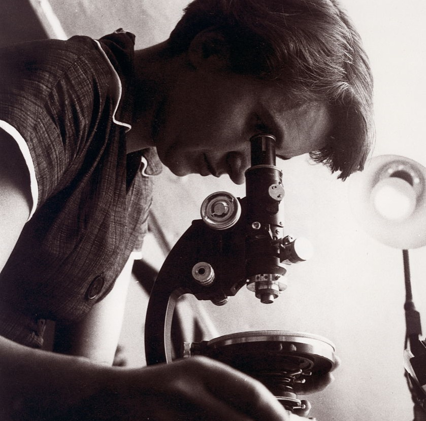 rosaline franklin