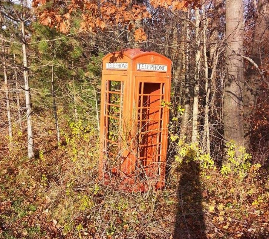 telephone in the middle of the woods britain