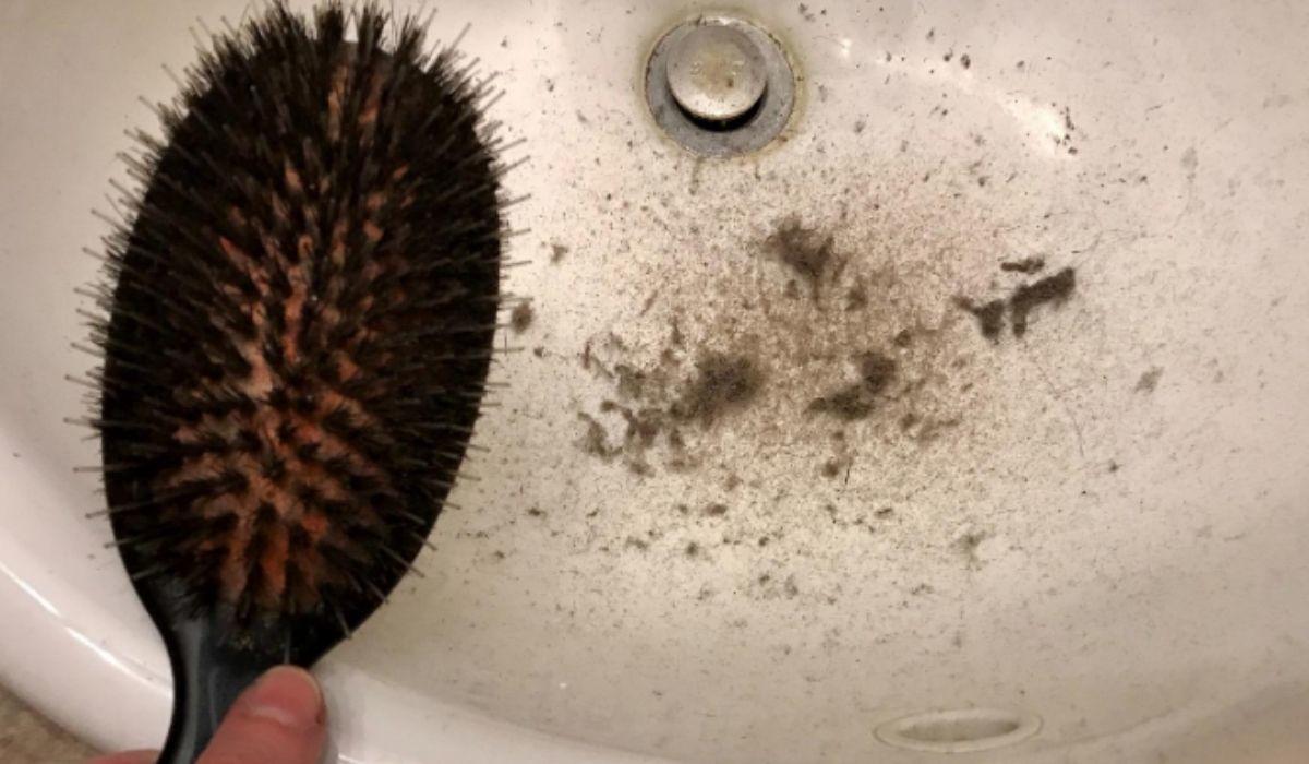 denman hair brush cleaner brush for brush on amazon