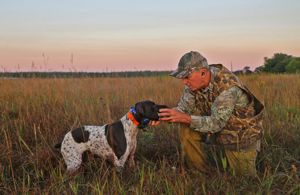 Rolf Moen of Brainerd receives a dove from his German shorthaired pointer, Sally,