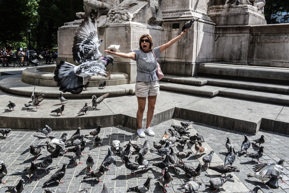 A tourist plays with pigeons outside of Central Park on August 30, 2018 in New York City.