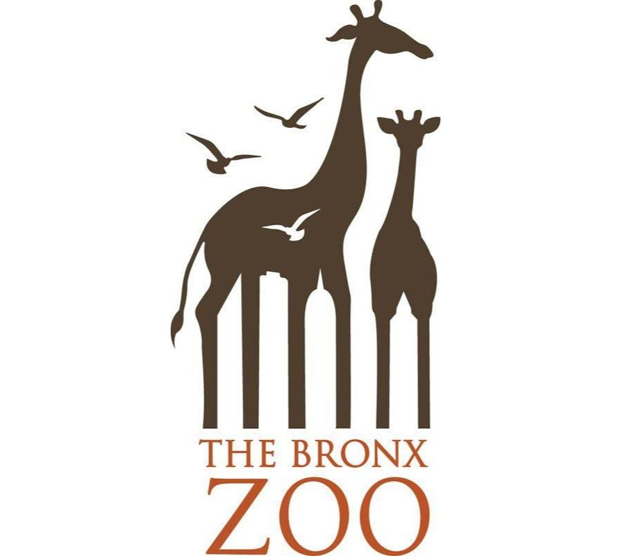 nyc skyline through giraffe legs