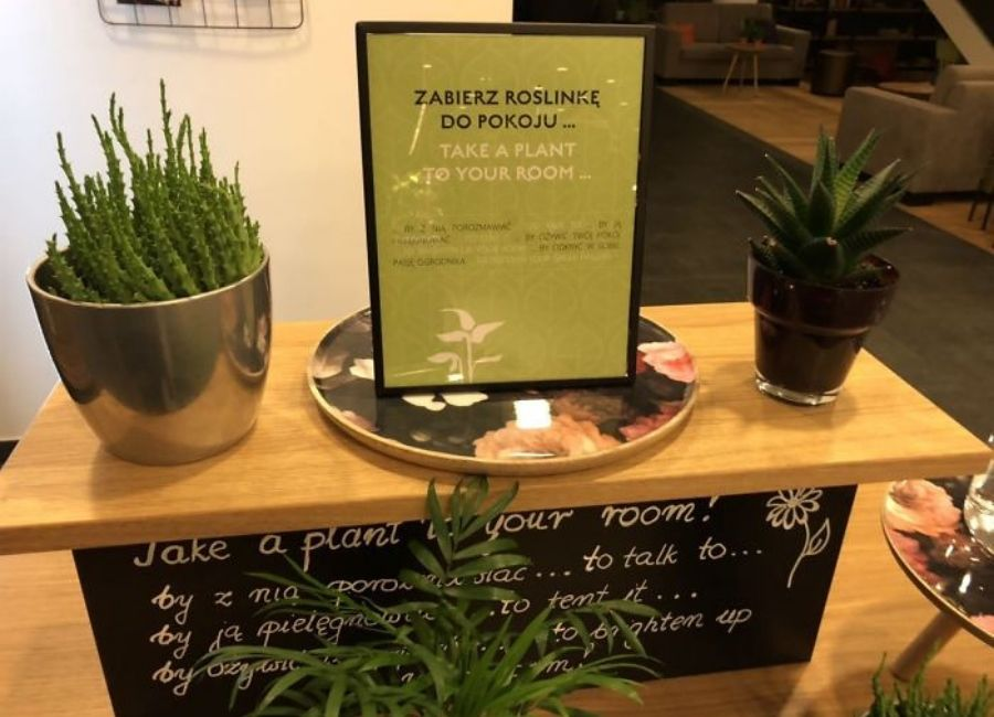 polish hotel with plants