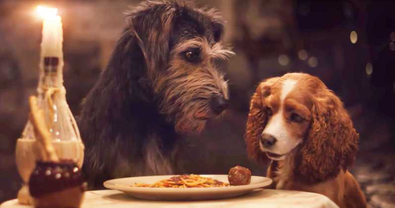 Lady and the Tramp Live Action