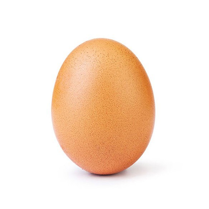 record breaking egg