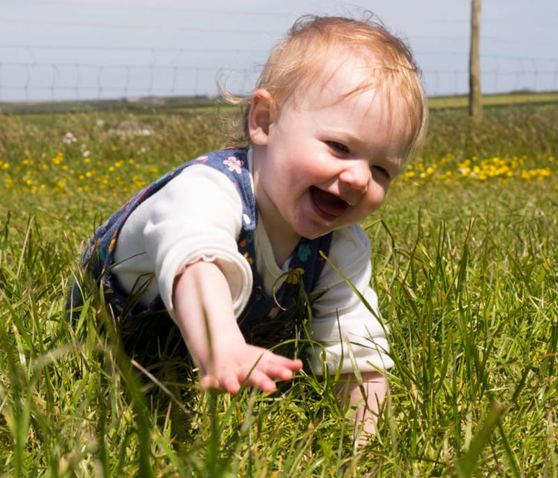 A baby girl crawls in grass.
