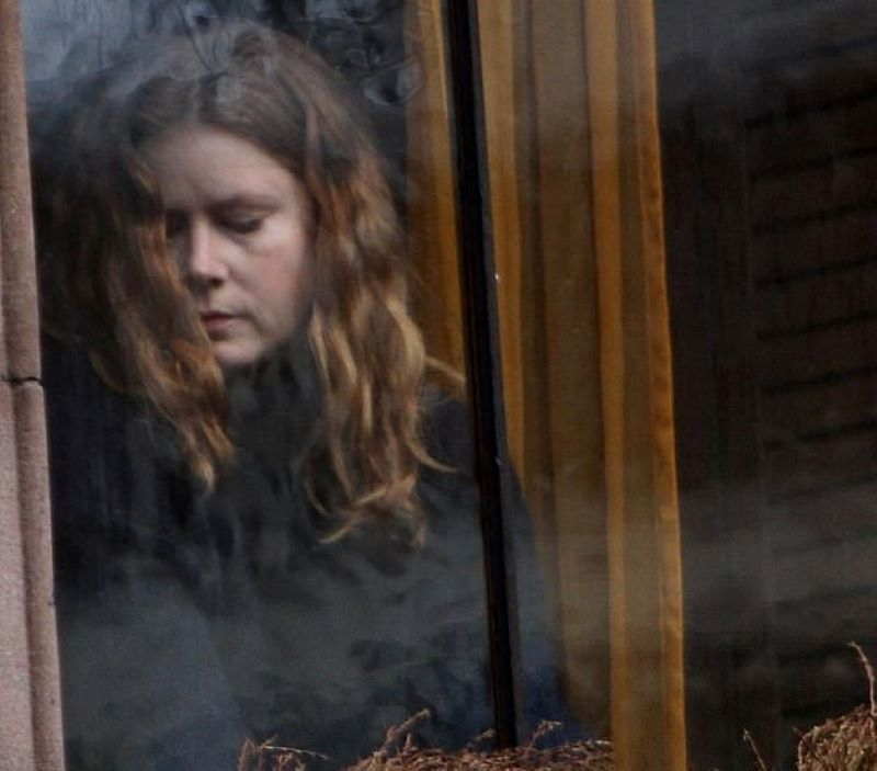 The Woman in the Window Is This Year's Psychological Thriller