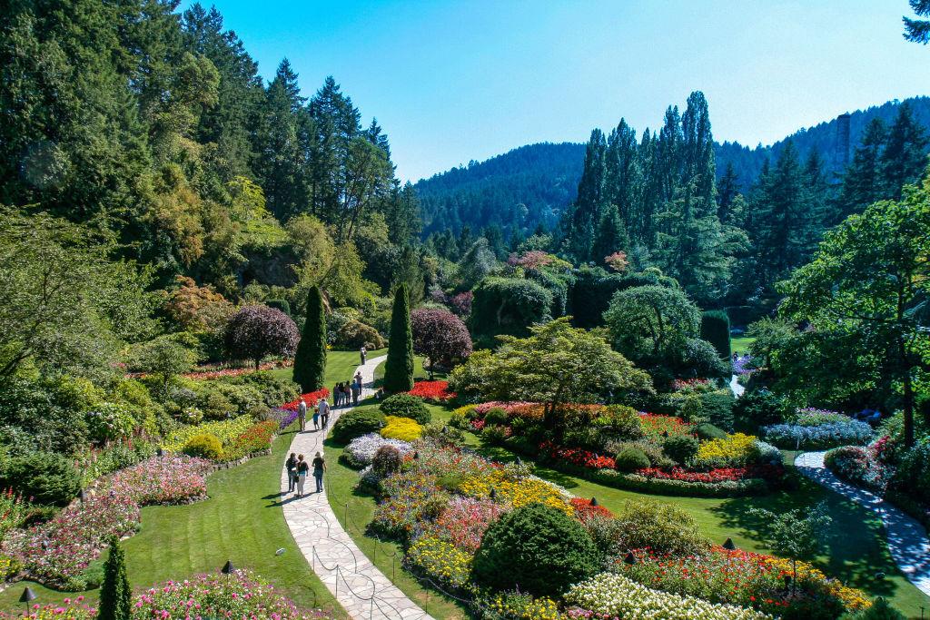 Butchart-gardens-973779898