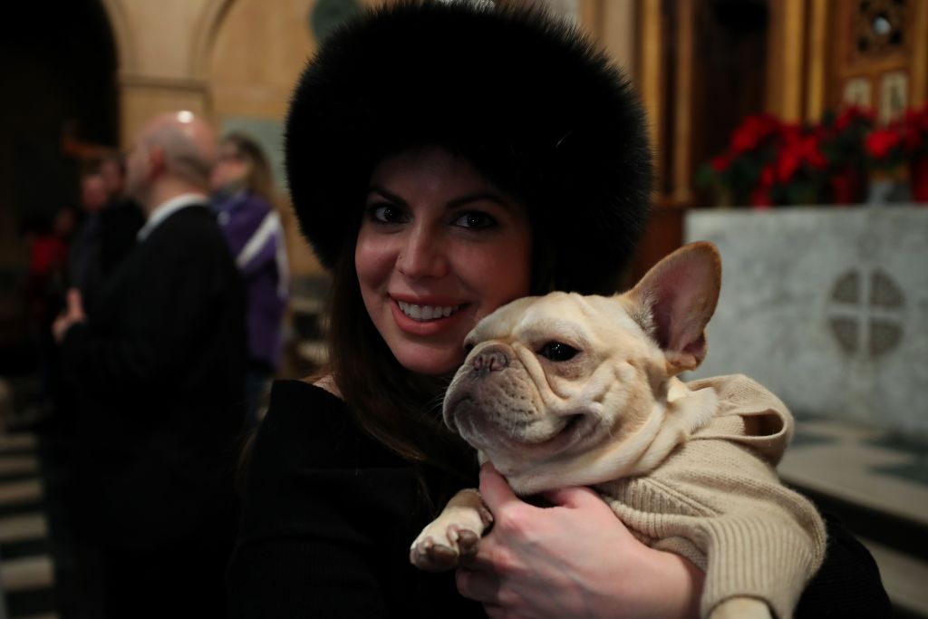 a woman holding her white frenchbulldog in a tan sweater