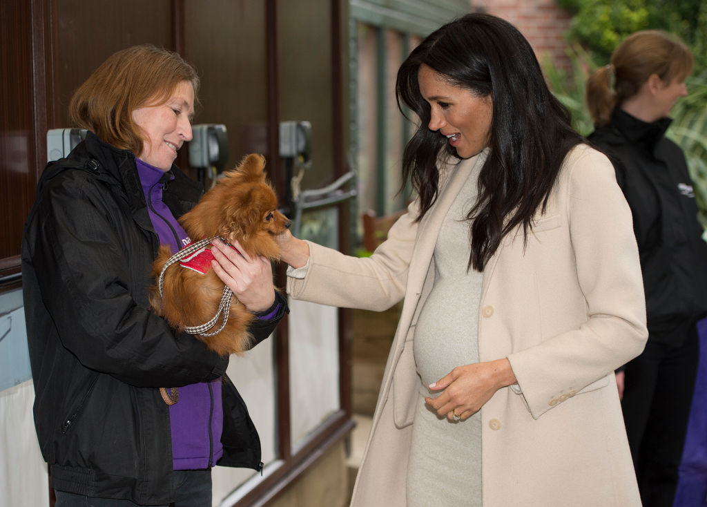 meghan markle with a dog