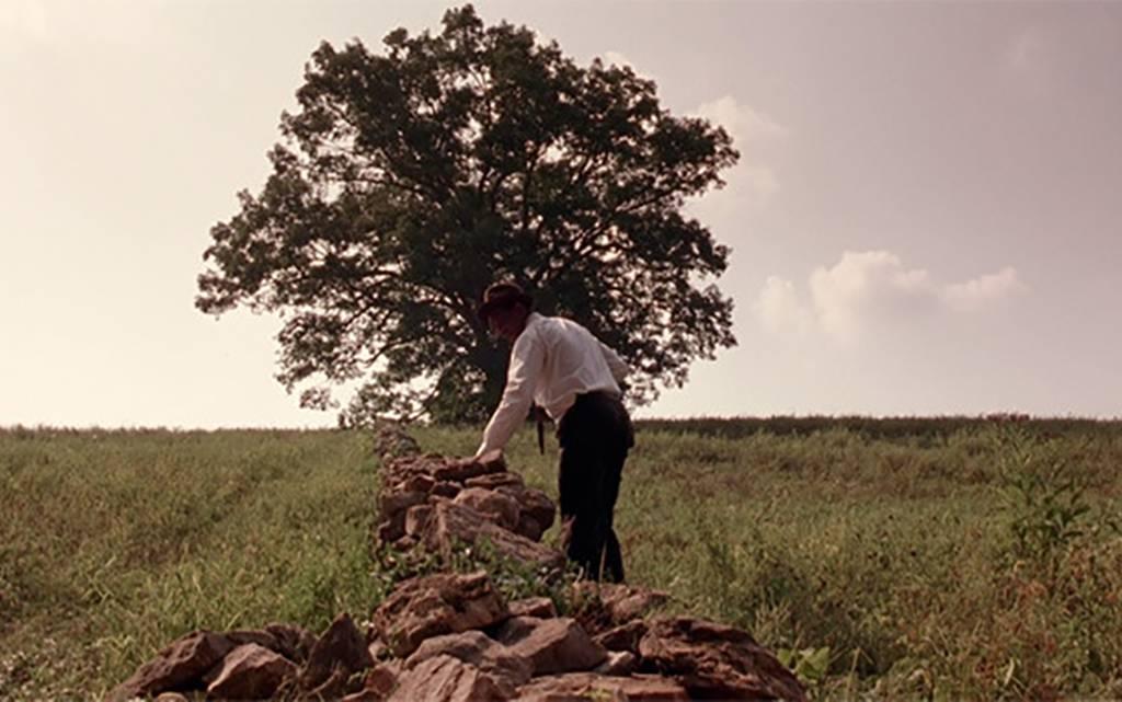 morgan freeman in front of a tree