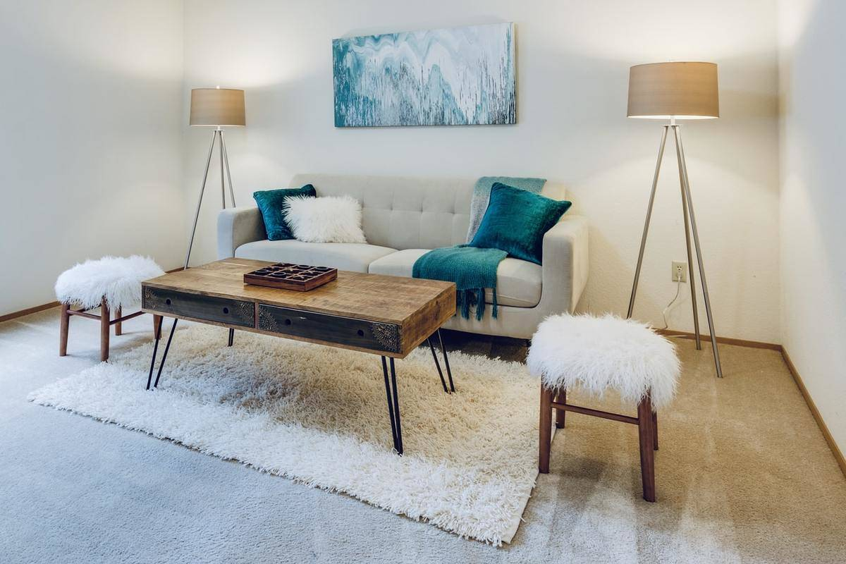 A living room features shag stools, pillow, and rug.