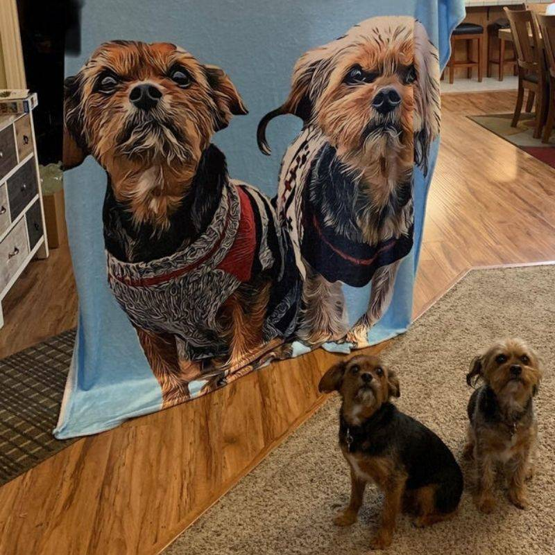 someone ordered a blanket from a sketchy website and it turned out well